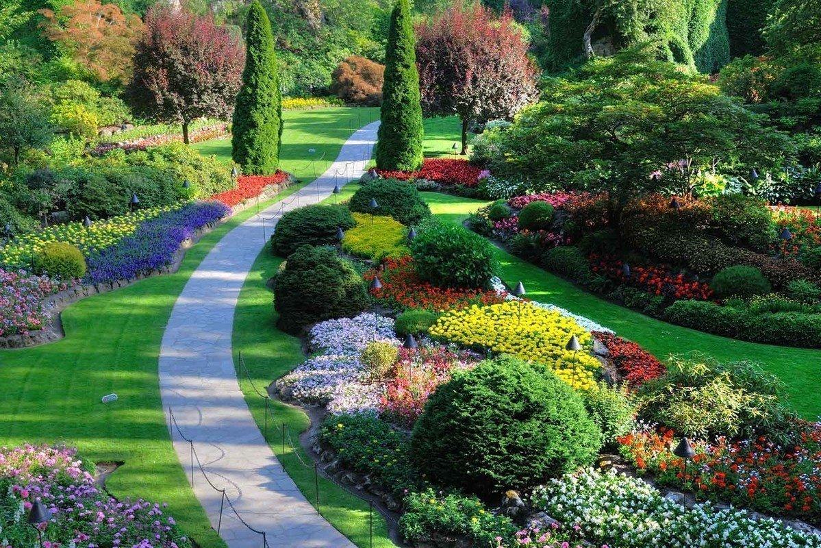 Украшение сада и для сердца услада